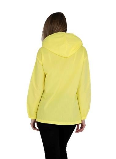 Bebe Plus Sweatshirt Sarı